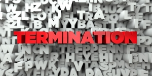 terminating parental rights